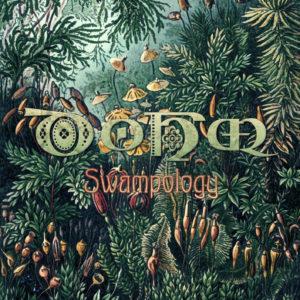 dohm-swampology-1