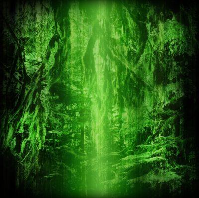 ekoplex-creatures-of-the-forest-7
