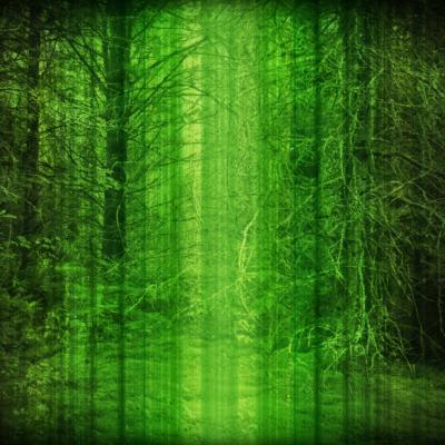 ekoplex-creatures-of-the-forest-9