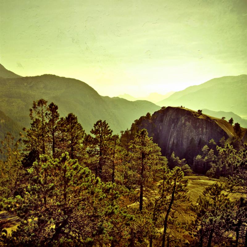 hinkstep-sunrise-from-the-treetops-3