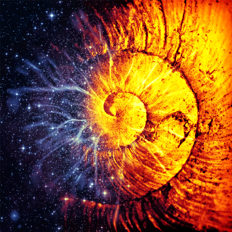 globular-a-self-fulfilling-prophecy-3