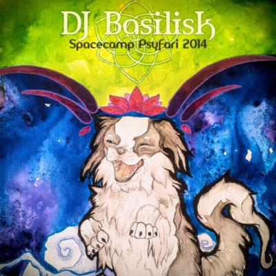 dj-basilisk-spacecamp-psyfari-2014