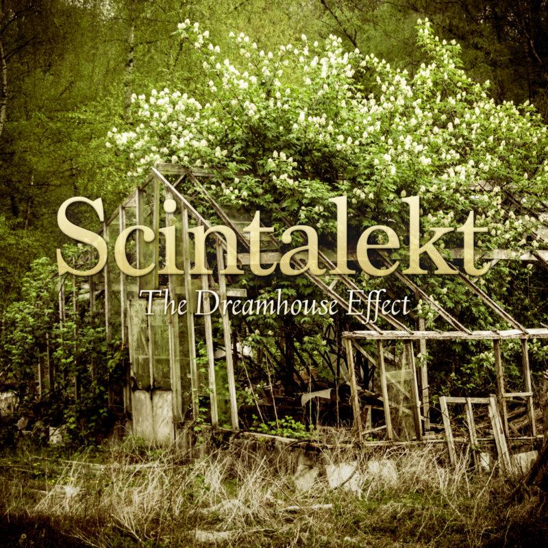 scintalekt-the-dreamhouse-effect-image-1