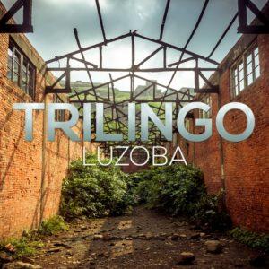 synaptic-trilingo-luzoba-image-1