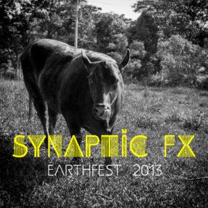 synaptic-fx-earthfest-2013